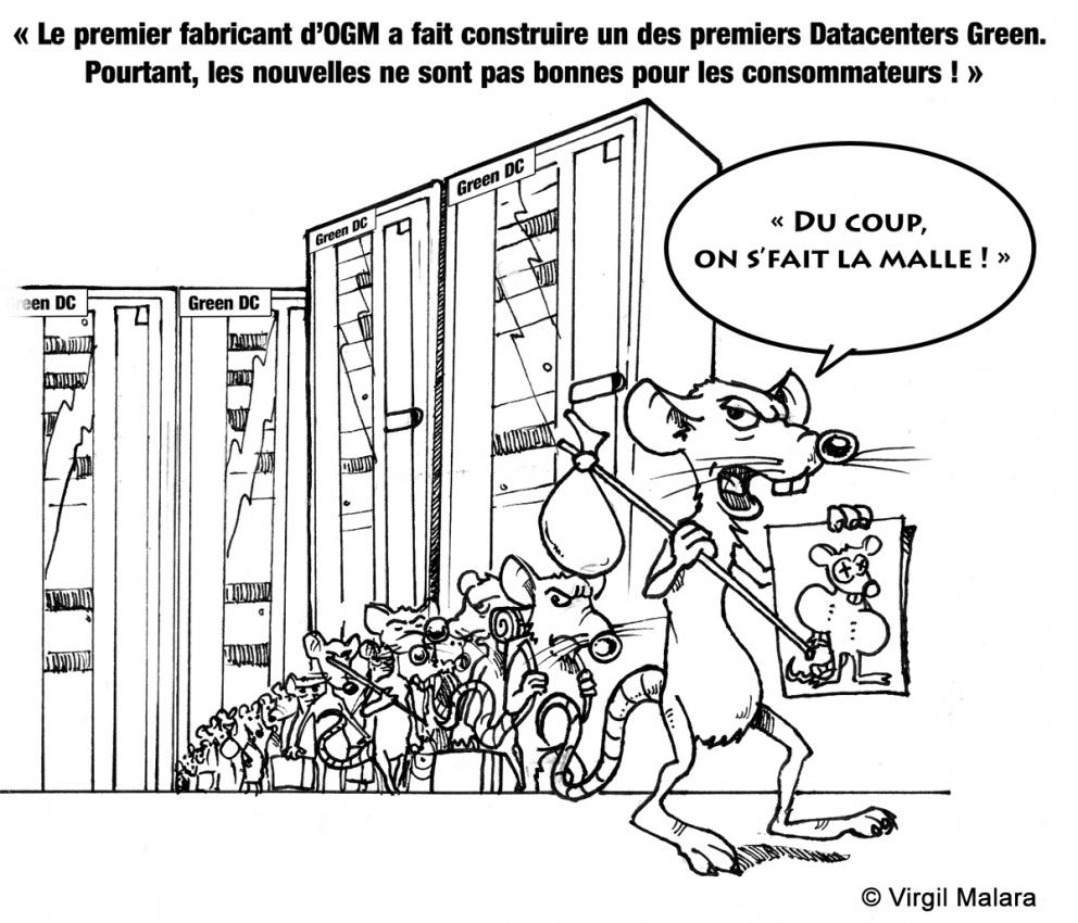 des-rats-dans-le-data-center